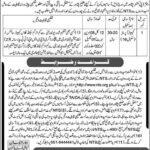 deputy-commissioner-peshawar-computer-operator-nts-jobs-2021